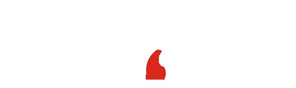 MOGUL-logo